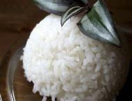 El arroz: Todos sus beneficios